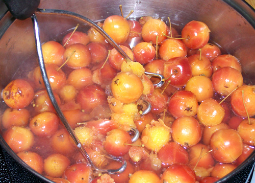 showing fully simmered crabapples almost ready to mash up.