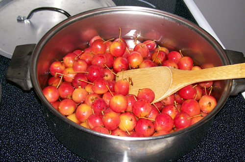 simmering all three pounds of sorted crabapples in another batch of fresh water.