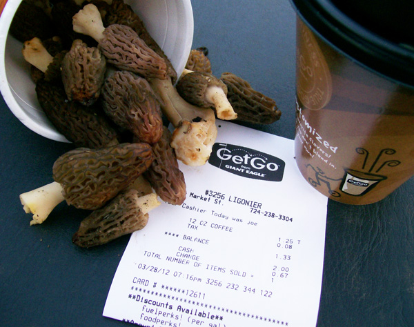 Photo of 22 Black Morels found on March 28, 2012 with a Get-Go receipt to verify date.